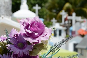 cemetary and flowers